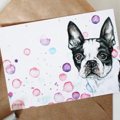 """Postkarte """"Frühlingsfarben"""" mit Boston Terrier von Aram und Abra"""