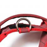 Halsband mit Griff, Hetzhalsband von Julius K9, rot - Detail - günstig online kaufen bei Hundesport Nubi