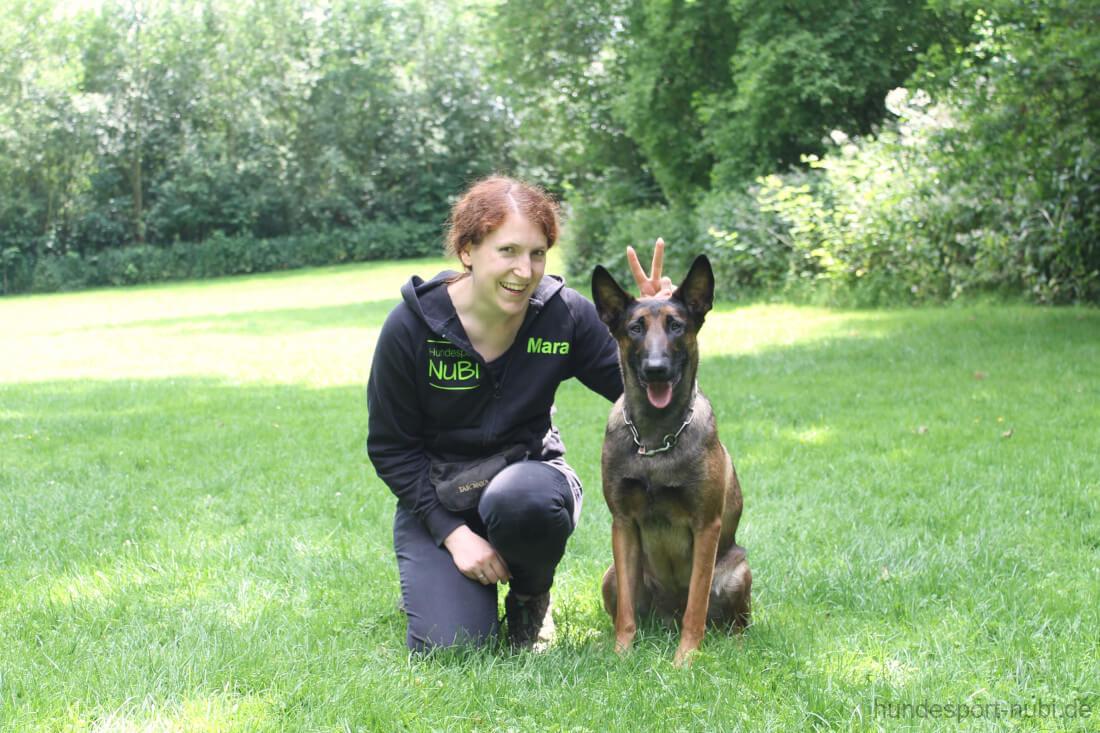 Malinois Wollie und Mara beim Training für die Begleithundeprüfung - Hundesport Nubi