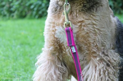 Leine Pink Julius K9 Airedale Terrier - Hundesport Nubi - Leinen günstig online kaufen