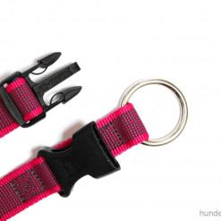 Halsband Julius K9 pink Verschluss 39 -65 cm - Hundesport Nubi