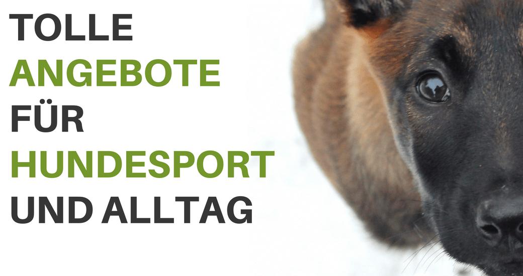 Angebote bei Hundesport Nubi - Onlineshop für aktive Hunde