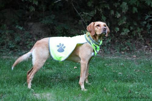 Warnweste mit Pfote neongelb reflektierend - Signalfarbe - Sicherheit - Hundezubehör hier günstig online kaufen: Hundesport Nubi - Shop für aktive Hunde