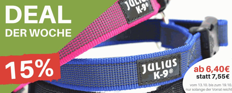 Deal der Woche - Halsbänder für den Hund - Hundesport Nubi Shop