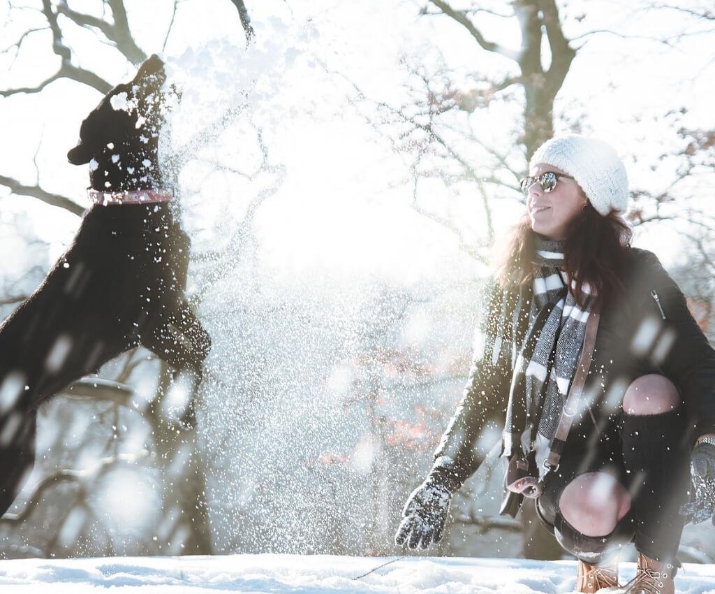 Geschenke für Hundesportler - 20 Ideen, was du Weihnachten schenken kannst - Weihnachtsgeschenke für Hund und Herrchen - Hundesport Nubi - Shop für aktive Hunde
