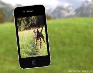 Das Handy im Hundetraining: so erleichtert das Smartphone dein Training - Hundesport Nubi