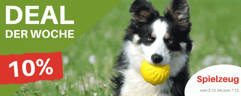 Deal der Woche - Hundespielzeug 10% Rabatt - Hundesport Nubi Shop