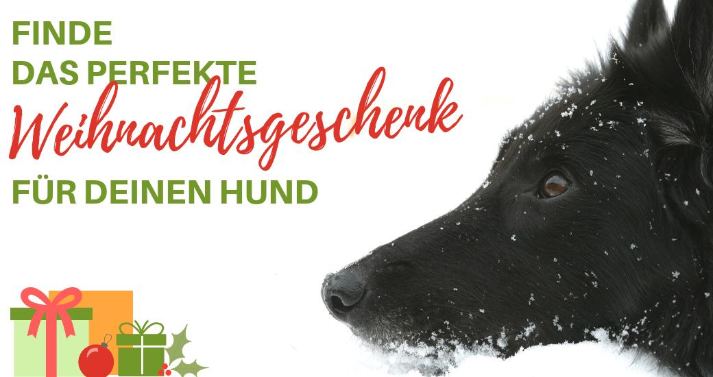 Weihnachten und Geschenke für den Hund - Hundesport Nubi - Onlineshop für aktive Hunde