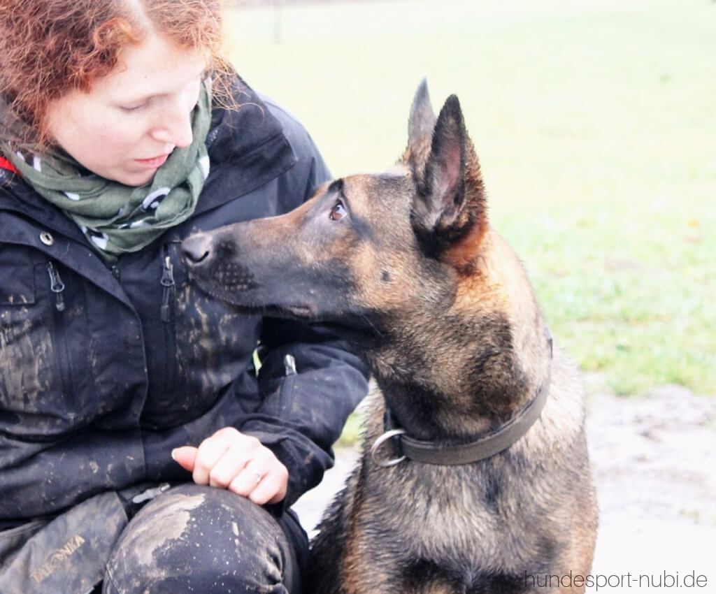 Begleithundeprüfung mit 15 Monaten_ Vom Welpen zum Begleithund - Team - Hundesport Nubi - Shop für aktive Hunde (1)
