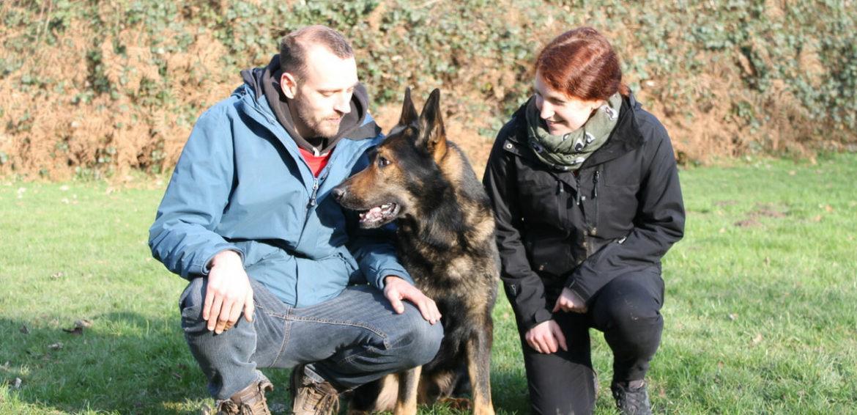Hundesport Nubi - das Team mit Schäferhund Nubi