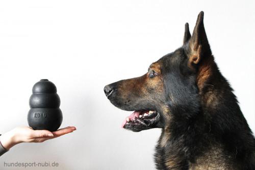 Kong extreme schwarz - groß - Schäferhund - Hundespielzeug