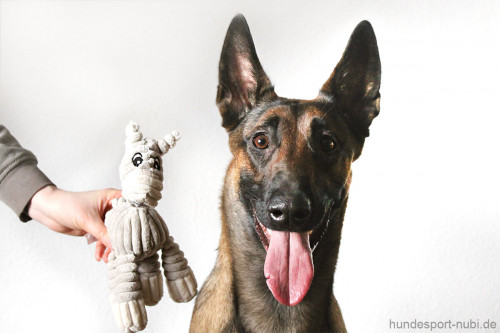 Plüschtier Esel Hunter - Spielzeug für Hunde - Hundesport Nubi