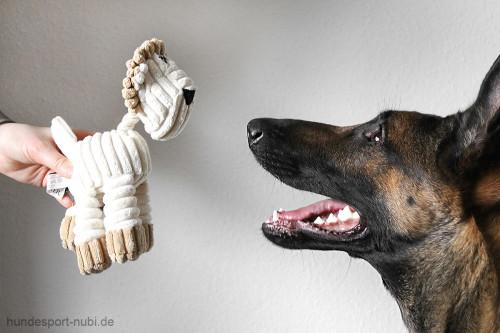 Plüschtier Löwe Hunter - Spielzeug für Hunde - Detail - Hundesport Nubi