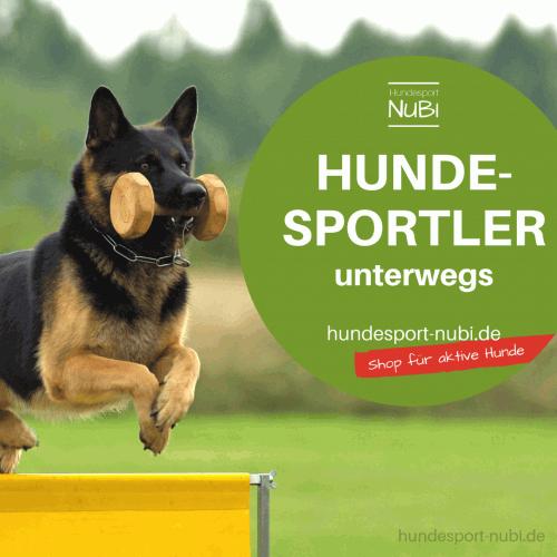 Gratis Aufkleber Hundesportler unterwegs_ für Auto, Hundebox und Co - hundesport-nubi.de