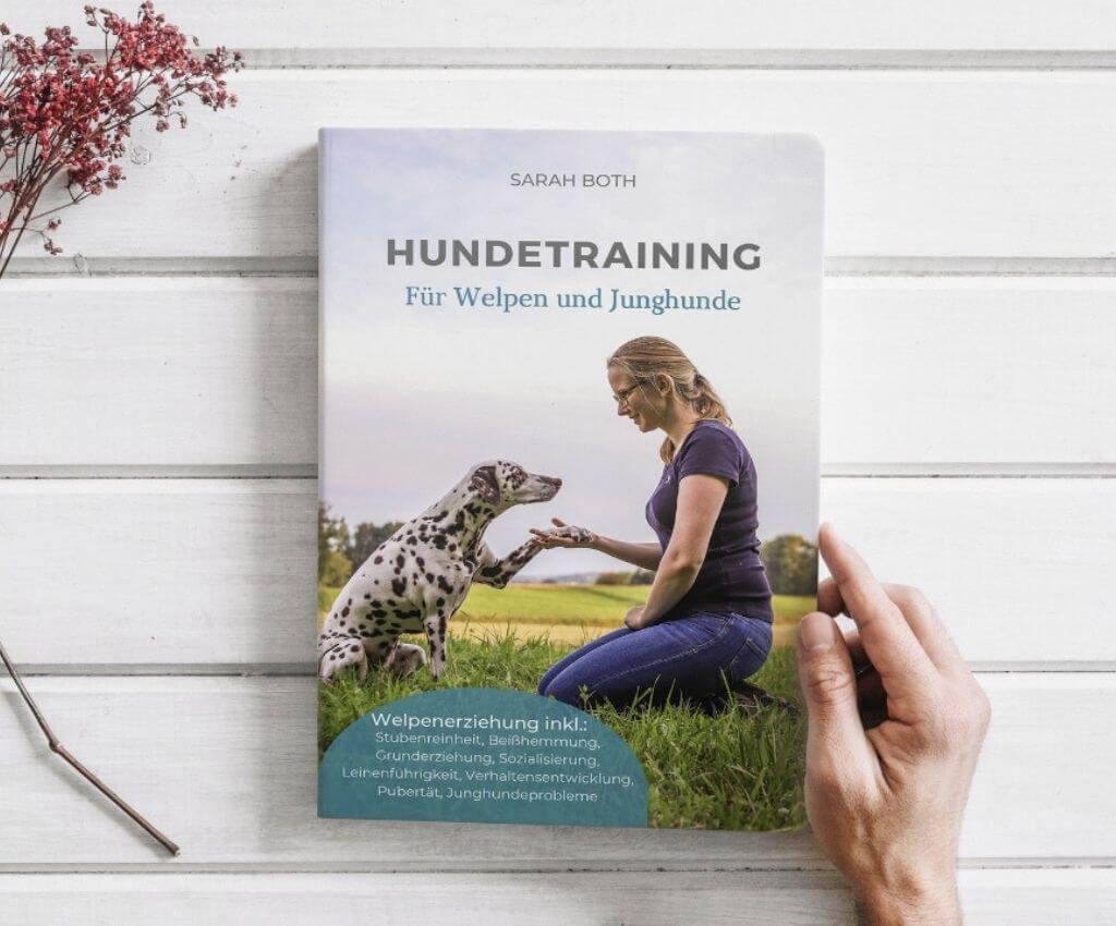 Hundetraining für Welpen und Junghunde, Sarah Both - Buch Rezension - Hundeblog Hundesport Nubi