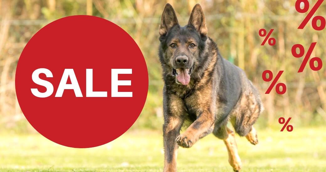 SALE - Hundeszubehör und Hundespielzeug günstig online kaufen