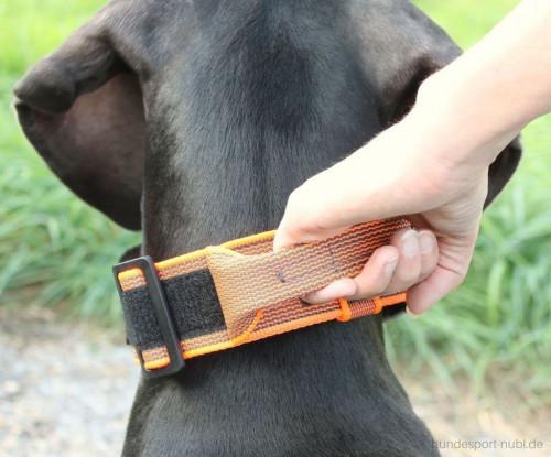 Halsband mit Griff, Hetzhalsband in neon orange, Julius K9 - günstig online kaufen bei Hundesport Nubi