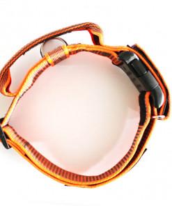 Halsband mit Griff, Hetzhalsband in neon orange, Julius K9 - robuste Qualität günstig online bestellen bei Hundesport Nubi