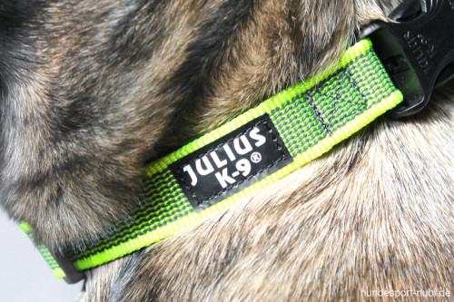 Halsband neon gelb - Signalfarbe - Julius K9 - 39 - 65 Halsumfang - billig online kaufen bei Hundesport Nubi