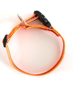 Halsband neon orange - Signalfarbe - Julius K9 - 27 - 42 Halsumfang - günstig online kaufen bei Hundesport Nubi
