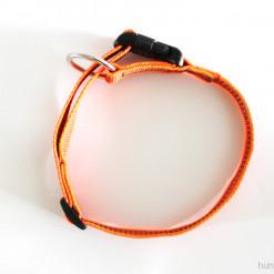 Halsband neon orange - Signalfarbe - Julius K9 - 39 - 65 Halsumfang - günstig online bestellen bei Hundesport Nubi