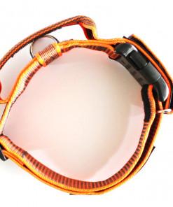 Hetzhalsband, Halsband mit Griff in neon orange, Julius K9 - günstig online bestellen bei Hundesport Nubi